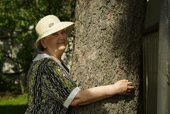 Älterer umarmender Baumstamm ihre Hände im Wald Lizenzfreie Stockfotos