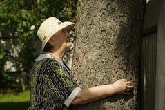 Älterer umarmender Baumstamm ihre Hände im Wald Lizenzfreie Stockbilder