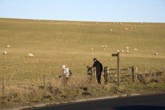 Älterer Wandererweg in der englischen Landschaft Stockfotos