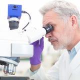 Älterer Wissenschaftler, der im Labor microscoping ist Stockfotos