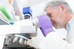 Älterer Wissenschaftler, der im Labor microscoping ist Lizenzfreie Stockfotos