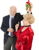 Älteres Casanova mit Mistel Lizenzfreie Stockbilder