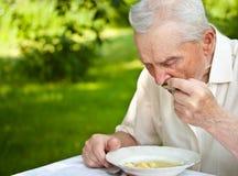 Älteres Fleisch fressendes Stockfotografie