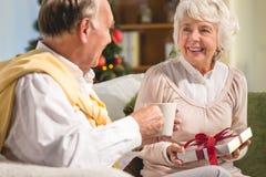 Älteres Paarausgabe Weihnachten zusammen Lizenzfreie Stockbilder