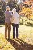Älteres Paarhändchenhalten und der Mann, der etwas zeigt Stockfotografie