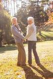 Älteres Paarhändchenhalten und Reparieren der Kamera Lizenzfreie Stockfotografie