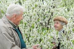 Älteres Paarspielverstecken Stockfotografie