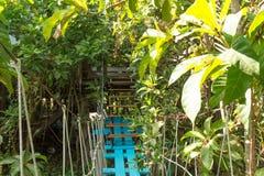 Ämbetsdräktgångbana ändå träden Royaltyfri Bild
