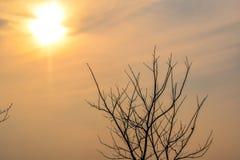 Ändå igen solljuset från solnedgång Arkivfoto