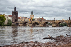 Änder på den Vltava floden Royaltyfria Foton