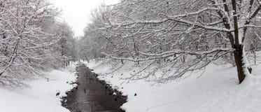 Änder på en vinterflod Fotografering för Bildbyråer