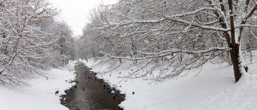 Änder på en vinterflod Arkivbild