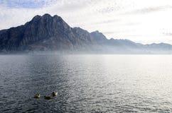 Änder på Iseo sjön, Italien royaltyfria bilder