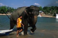 ÄNDERN SIE TUN CHAO. Amazonas. Brasilien Lizenzfreie Stockfotos