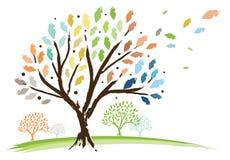 Ändernde Jahreszeit-Bäume Stockbild