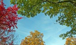 Änderung am Objektprogramm des blauen Himmels Stockfoto