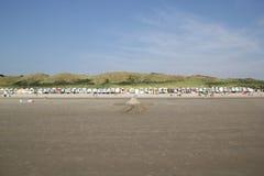 Ändlös serie av strandkojor Arkivbild