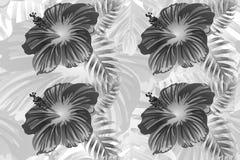 Ändlöst tryck för hawaiansk vändkretsdjungel stock illustrationer