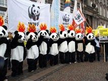 ändra klimatdemonstrationsun Fotografering för Bildbyråer