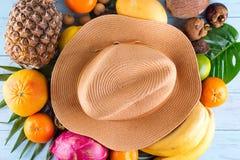 ändra sommaren för illustrationen för färgrik färgsammansättning den lätta till vektorn Tropiska palmblad, hatt, många frukter på royaltyfri bild