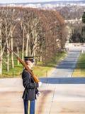 Ändra vakten i Arlington arkivfoton