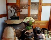 30 ändrande för korea för guardsjuli konung söder pal s seoul Arkivfoto