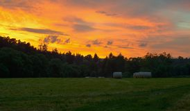 äng över solnedgång Royaltyfri Foto