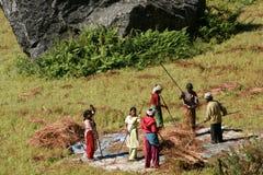 Äng för bondeted hö Fotografering för Bildbyråer