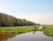 Äng för holländarelägenhetlandskap med träd och diken Royaltyfri Foto