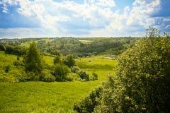 Äng, himmel, landskap och träd Fotografering för Bildbyråer