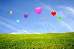 Äng med färgrika ballonger Arkivfoto