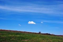 Äng med grönt gräs, molnig himmel Arkivfoto