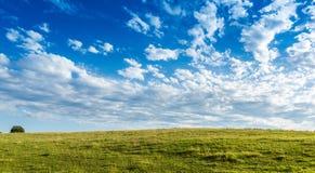 Äng med härlig bakgrund för blå himmel med kopieringsutrymme royaltyfria bilder