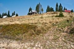 Äng med isolerade hus och isolerade träd i Gorce berg Royaltyfri Fotografi