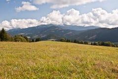 Äng med panorama av Tatry berg Arkivfoto