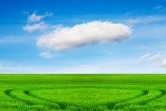 Äng och härlig himmel arkivbild