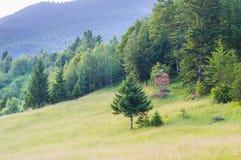 Äng och litet wood hus Royaltyfri Bild