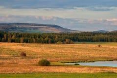 Ängar av guld- gräs Fotografering för Bildbyråer