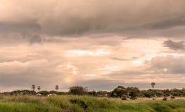 Ängar av Tanzania Royaltyfria Foton