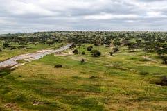 Ängar av Tanzania med floden royaltyfria bilder