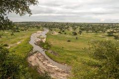 Ängar av Tanzania med floden arkivbilder