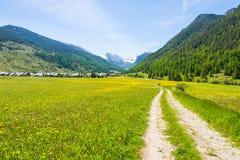 Ängar, berg och skog för smutslandsväg korsning blommiga i sceniskt alpint landskap och lynnig himmel Sommaraffärsföretag och ro arkivbild