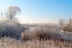 Ängar, buskar och träd som täckas med sagolikt vinterlandskap för frost royaltyfria bilder