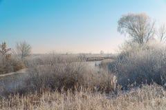 Ängar, buskar och träd som täckas med sagolikt vinterlandskap för frost royaltyfria foton