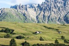 Ängar Dolomites Alpe di Siusi, södra Tyrol arkivbild