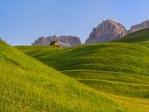 Ängar för grönt gräs i dolomitesna, fjällängar, Italien Arkivfoton