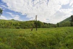 Ängar i Bieszczady berg Arkivfoton