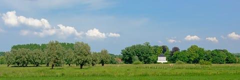 Ängar med träd i den flemish bygden med en utsmyckad herrgård bakom royaltyfri foto