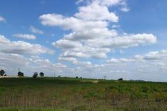 Ängar och blåa himlar royaltyfria bilder