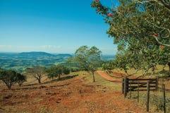 Ängar och träd i en grön dal med lantgårdporten arkivbild